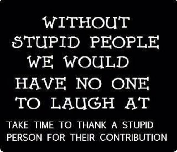 funny insult quotes